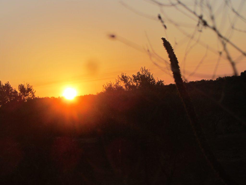 Sonnenuntergang bei Ugento