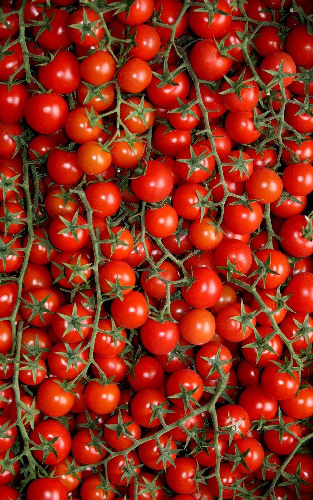 Tomaten aus Apulien